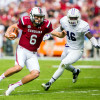 NCAA Football: Furman at South Carolina