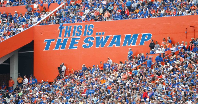 Nov 15, 2014; Gainesville, FL, USA; An overview of where the Florida Gators play in The Swamp during the second half against the South Carolina Gamecocks at Ben Hill Griffin Stadium. South Carolina Gamecocks defeated the Florida Gators 23-20 in overtime. Mandatory Credit: Kim Klement-USA TODAY Sports