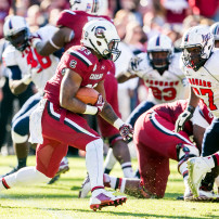 Nov 22, 2014; Columbia, SC, USA; South Carolina Gamecocks running back David Williams (33) rushes against the South Alabama Jaguars in the second half at Williams-Brice Stadium. Mandatory Credit: Jeff Blake-USA TODAY Sports