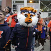 Nov 22, 2014; Auburn, AL, USA; Auburn Tiger mascot, Aubie, welcomes the team at the end of Tiger Walk prior to the game against the Samford Bulldogs at Jordan Hare Stadium. Mandatory Credit: John Reed-USA TODAY Sports