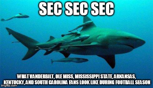 SEC Shark MEME