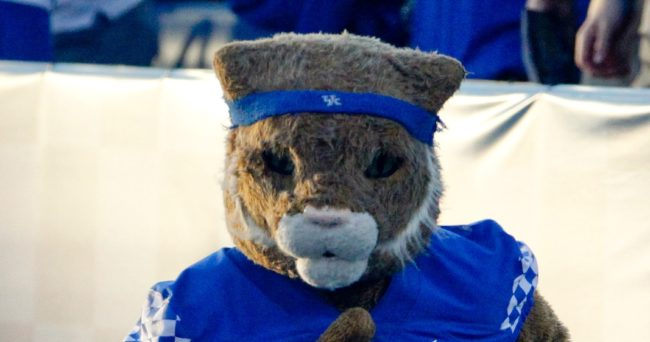 Sep 3, 2016; Lexington, KY, USA; The Kentucky Wildcats mascot runs on the field before the game against the Southern Mississippi Golden Eagles at Commonwealth Stadium. Southern Mississippi defeated 44-35. Kentucky Mandatory Credit: Mark Zerof-USA TODAY Sports