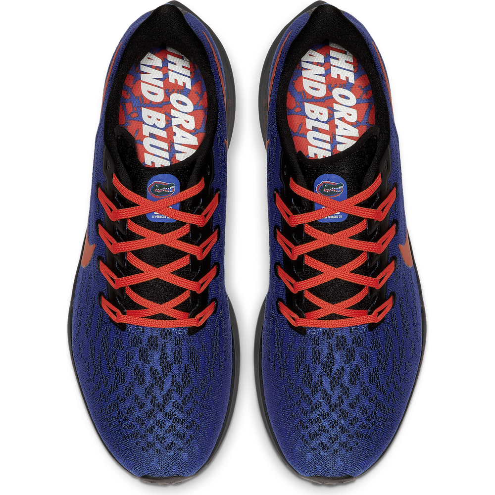 Florida Gators special edition Nike