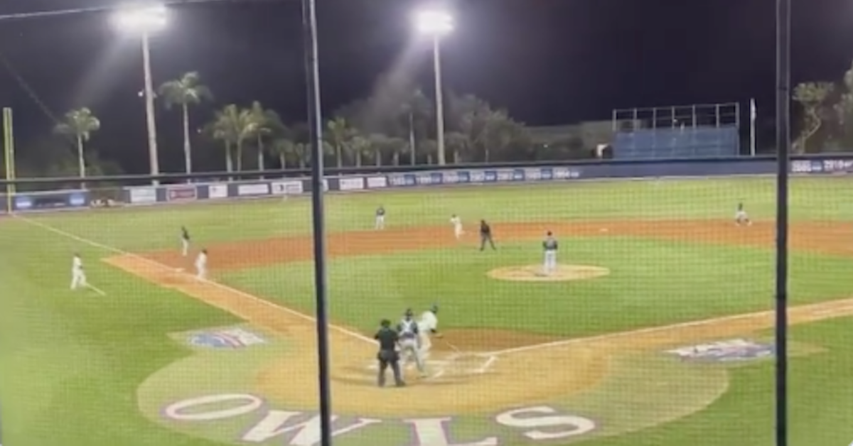 Freshman college baseball player hits 2 grand slams in first 2 at-bats of his career